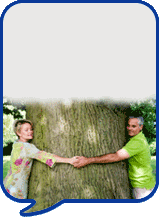 image of two people with a tree